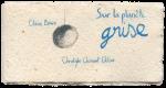Claire Désiré, Sur la planète grise